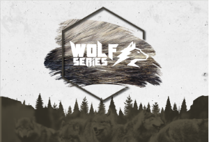 WOLF SERIES TRAIL RUN 2ª ETAPA - AMERICANA