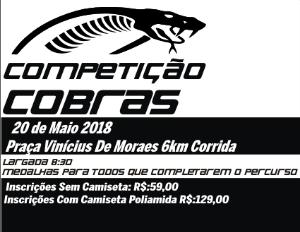 COMPETIÇÃO COBRAS - Imagem do evento